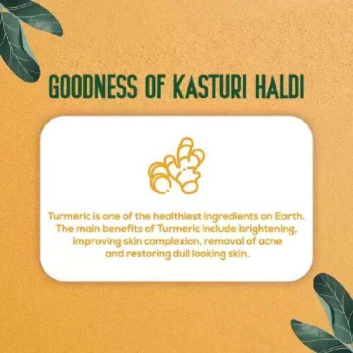Oilanic 100 Pure Natural Kasturi Haldi Powder For Skin Hair100gm 2